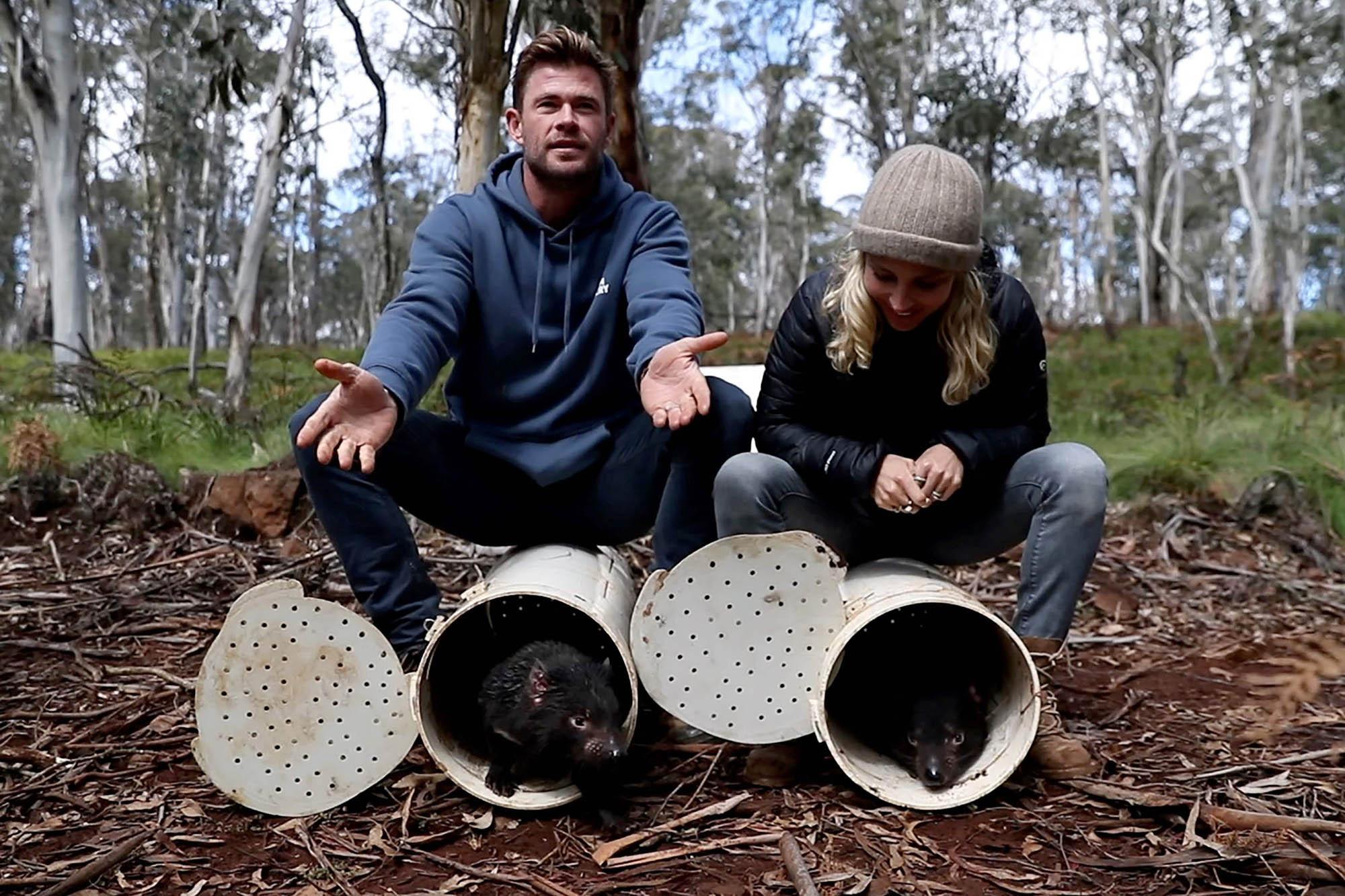 Chris Hemsworth e esposa posam com diabos da tasmania